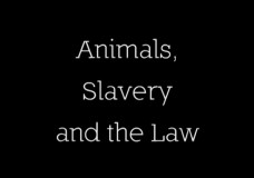 Animals, Slavery and the Law (Compilation)